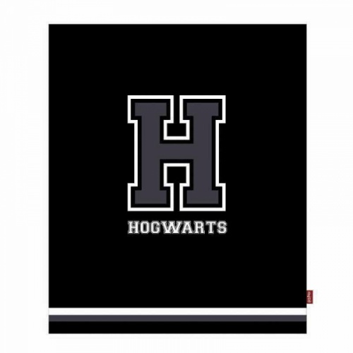 Harry Potter - H mint Hogwarts pléd